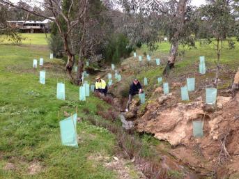 denis-smith-and-alan-jones-planting