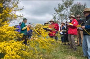 Annual Wattle Day talks are always popular